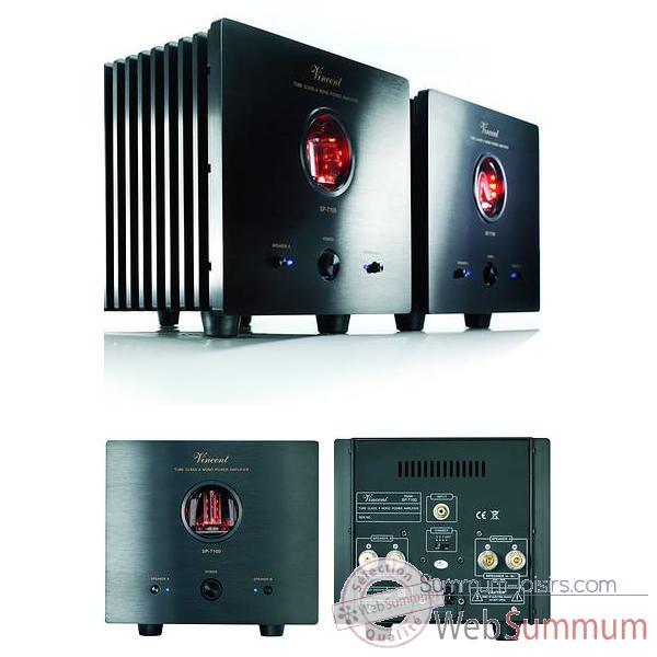 amplificateur de puissance sp t100 amp mono classe a. Black Bedroom Furniture Sets. Home Design Ideas