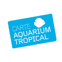 Aquarium Tropical de la Porte Doree (Paris 12e) - Pass-Adulte-Annuel (a partir de 26 ans)